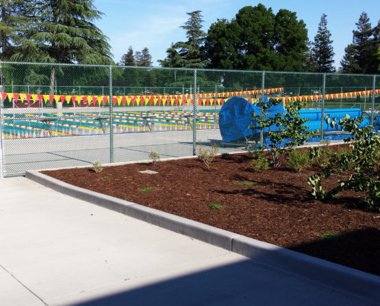 California State University Stanislaus Pool Renovation